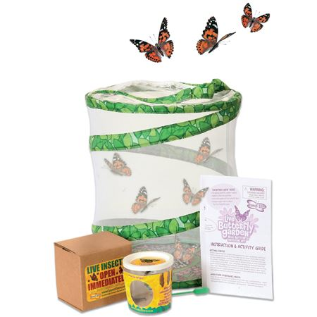 Picture of Live Butterfly Garden Kit