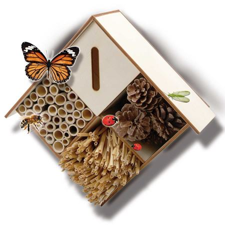 Picture of Insect Hotel